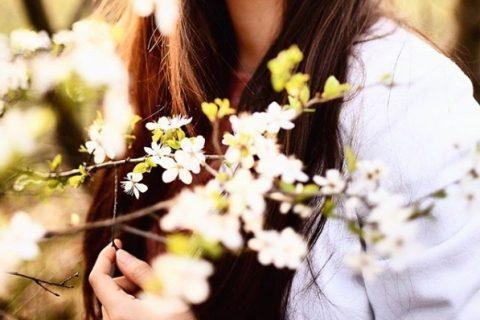 wiosna pełna kwiatów